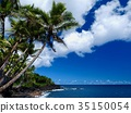Scenery of Island of Hawaii 35150054