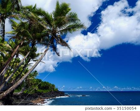 hawaiian islands, coast, seashore 35150054