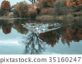 Ducks in the pond. In the autumn they swim in lake 35160247