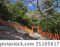 神殿 樱花 樱桃树 35165617