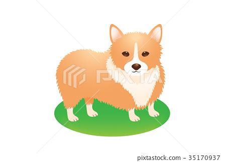 一隻狗 35170937