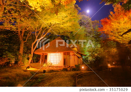 kodaiji temple tearoom in autumn 35175029