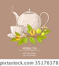 herb, vector, herbal 35176378
