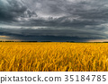 Round storm cloud over a wheat field. Russia 35184785