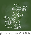 Hand drawing Crocodile Cartoon on Green board 35189014