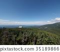 森林 樹林 堆 35189866