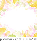 大波斯菊 银杏 秋天 35206230