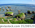 宮古島 珊瑚 珊瑚礁 35206520