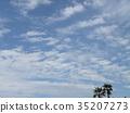 ท้องฟ้าเป็นสีฟ้า,ฤดูใบไม้ร่วง 35207273