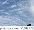 ท้องฟ้าเป็นสีฟ้า,ฤดูใบไม้ร่วง 35207722
