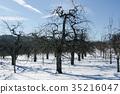 winter, snow scene, snowscape 35216047