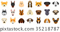 Set Heads of Dogs, Collection Different Breeds of 35218787