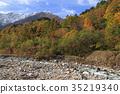 鹿島槍ヶ岳 산록 오오하라의 가을 35219340