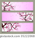 Vector Cherry blossom for Chinese New Year  35222068