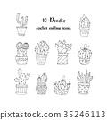 Cactus succulents vector illustrations. 35246113