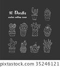 Cactus succulents vector illustrations. 35246121