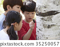 昆蟲 孩子 兒童的 35250057