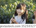 作物 女孩 那個女孩 35250327