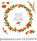 Hand drawn wreath with red berries and branches 35259474