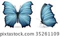 蝴蝶 蟲子 昆蟲 35261109