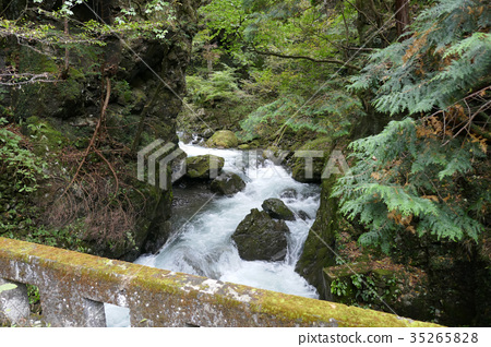 從奧山和石澤森林道的石橋看到的開澤河(1) 35265828