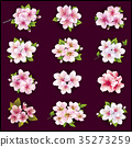 Set of cherry and apple blossom 35273259