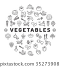 Vegetable icon circle infographics. Mega 35273908
