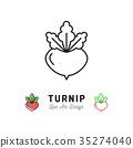 Turnip icon Vegetables logo. Thin line art design 35274040