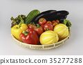 甜椒,番茄,下降番茄,甜瓜,茄子,西葫蘆,生菜 35277288