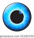 Blue, iris, eye 35282549