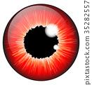 red, iris, eye 35282557