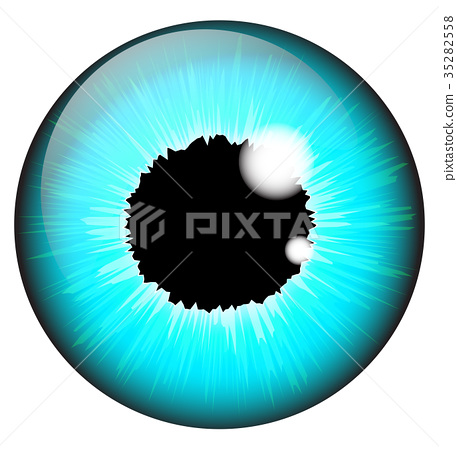 Blue iris eye realistic  vector  35282558