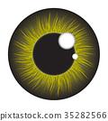 green, iris, eye 35282566