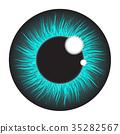 Blue, iris, eye 35282567