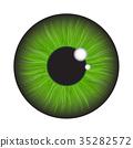 green, iris, eye 35282572