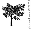 tree, silhouette, vector 35282638