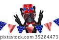 american animal bulldog 35284473
