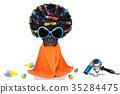 dog, groom, groomer 35284475