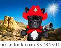 cowboy western sheriff dog 35284501