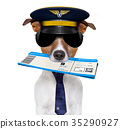 airline pilot flight attendant check in  ticket 35290927