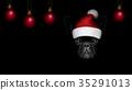 黑色 聖誕節 聖誕 35291013