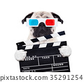 dog watching the  movies 35291254