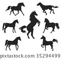 Silhouettes of Arabian Horse 35294499