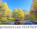 autumn, autumnal, maple 35297828