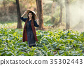 tobacco, farm, woman 35302443