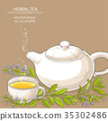 sage tea illustration 35302486