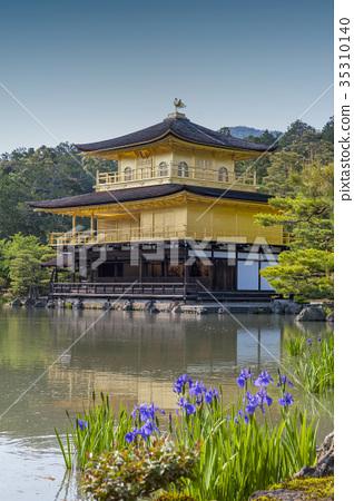 Kinkaku-ji or the Golden Pavilion, Kyoto, Japan 35310140