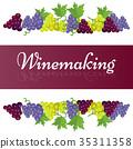 winemaking, grape, bunch 35311358