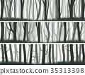 橫幅 樹幹 樹木 35313398