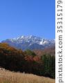 ฤดูใบไม้ร่วง,ต้นเมเปิล,ท้องฟ้าเป็นสีฟ้า 35315179